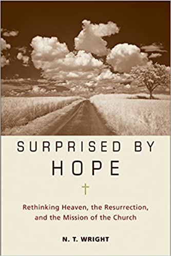 N. T. Wright - Surprised by Hope Audio Book Free